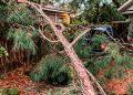Al menos tres muertos por el azote del huracán Zeta en el sur de EEUU