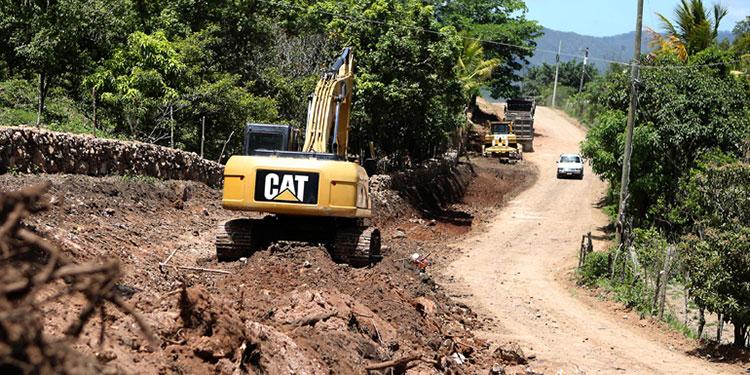 100,000 productores de café han resultado afectados por Eta.