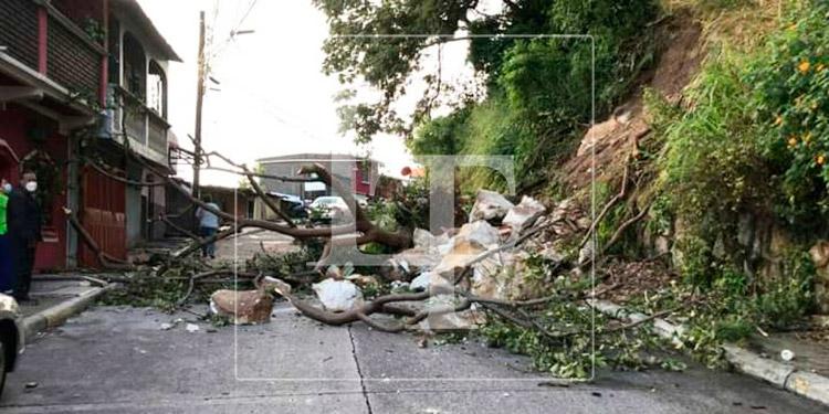 Lluvias dejan varios deslizamientos en la capital
