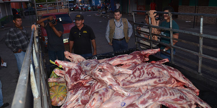 Desabastecimiento de carne a la vista por cierre de procesadora