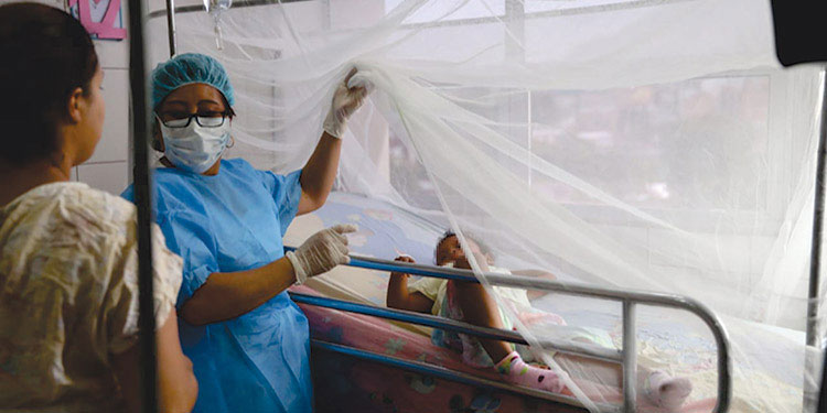 Bajan casos de dengue en tres semanas