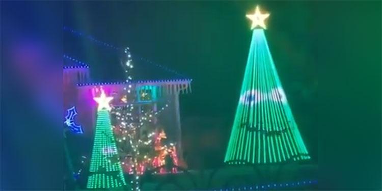 Curioso video de dos árboles de Navidad hablando causa furor en las redes