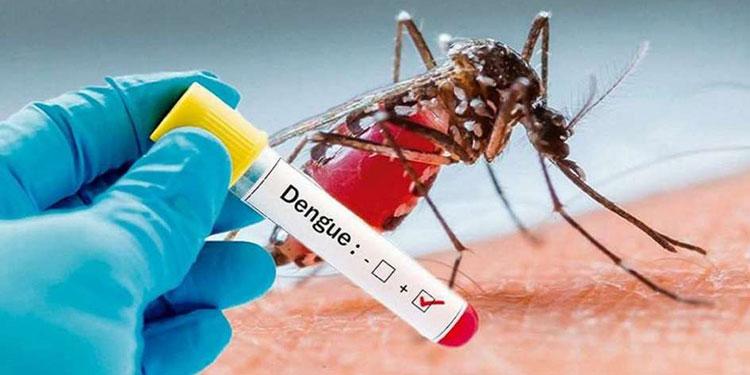 17 niños fallecieron por dengue el año pasado en el HE.