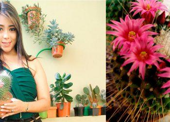 Iliana Gabriela Gutiérrez muestra parte de su colección de cactus y suculentas.