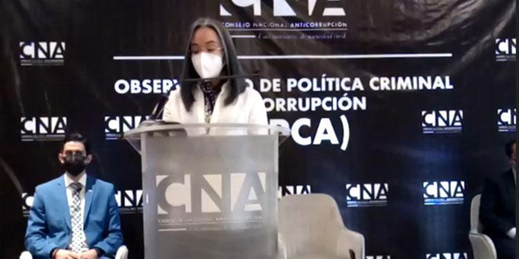 La directora del CNA, Gabriela Castellanos, amplió en una conferencia de prensa, lo expuesto en el informe.
