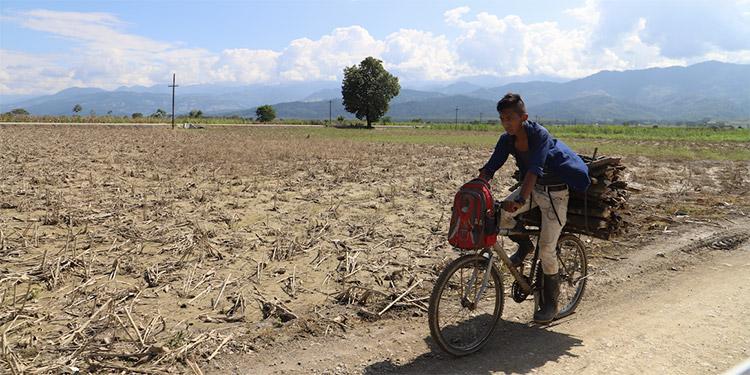 El plan de respuesta en Honduras apoyará la recuperación de 93 mil personas.