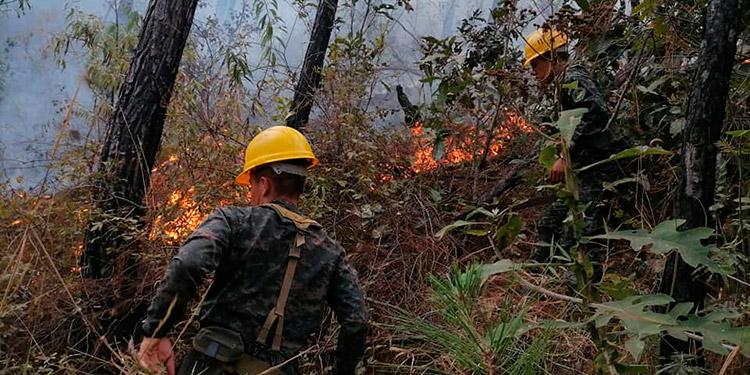 Los incendios forestales afectan en promedio unas 63,000 hectáreas de bosque en los incendios forestales de la temporada seca.