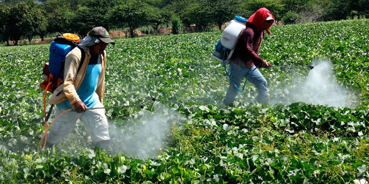 LAFISE reconoce la importancia del sector productivo que este sector tiene para implementar modelos de trabajo eficientes que generen empleos de calidad e incrementen la productividad para garantizar el abastecimiento de alimentos a la población.