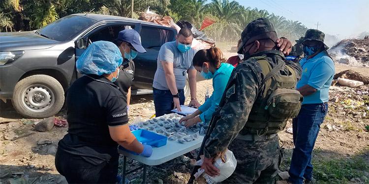 En la quema de drogas participaron todos los entes que conforman la Fuerza de Seguridad Interinstitucional Nacional (Fusina).