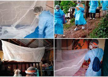 Detectan un caso de malaria en Islas de la Bahía