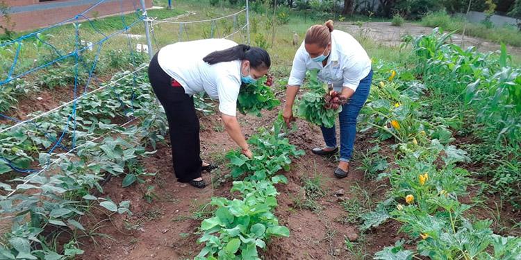 El programa Presidencial Ciudad Mujer tiene como objetivo contribuir al mejoramiento de las condiciones de vida de las mujeres en Honduras.