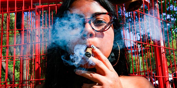 La Cámara de Diputados de México aprobó la legislación que regula el consumo, el cultivo y el comercio de marihuana con fines recreativos en todo el territorio. (LASSERFOTO EFE)