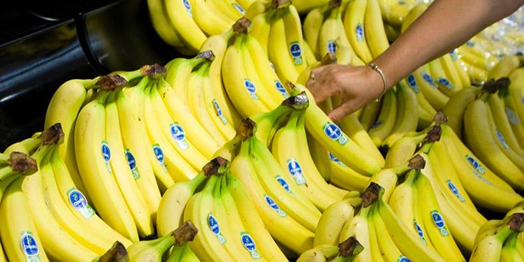 En el sector agrícola se concentra la oferta exportable hondureña a EE. UU. bajo las condiciones arancelarias del RD-CAFTA.