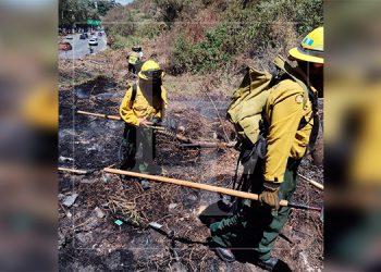 Viceministro de ICF: 65% bajan incendios forestales este año