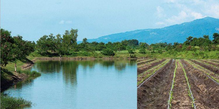 Las inversiones de la agroindustria azucarera se orientan a fortalecer las buenas prácticas para proteger el medio ambiente y el planeta.