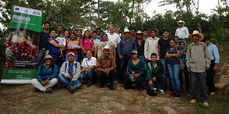 En Honduras el Procagica, benefició a unos 831 productores de café en 4 municipios del departamento de La Paz.