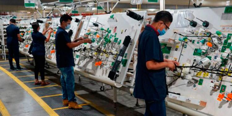 Este año pinta bien para los arneses eléctricos y tableros producidos por la maquila hondureña que tienen demanda en el mercado internacional.