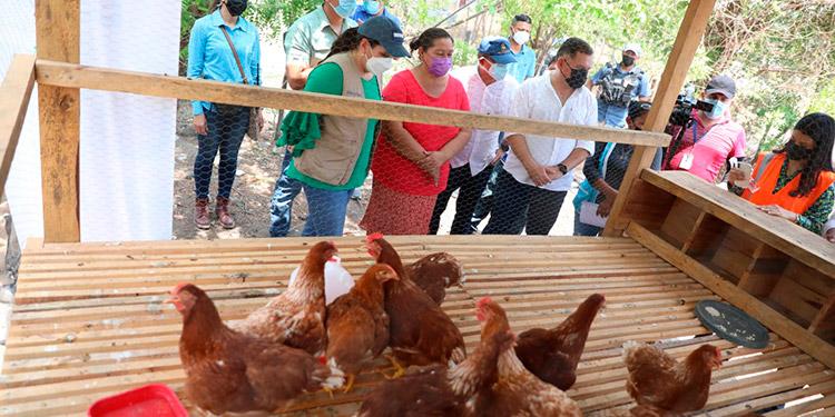 La Primera Dama hizo entrega de aves ponedoras y cerdos a los pobladores de Agua Fría, Nacaome.