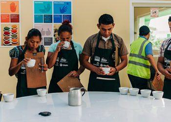 Forman a jóvenes catadores de café