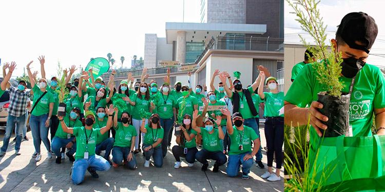 """En la jornada que se denominó """"plante un árbol, plante esperanza"""", participaron empleados y funcionarios del BCH."""
