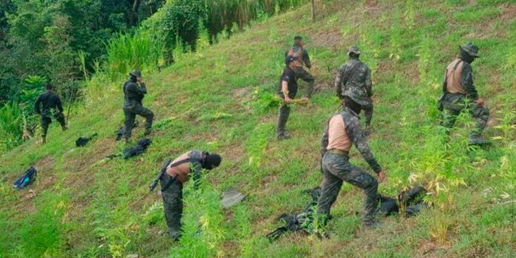 Las operaciones antidrogas hoy proseguían en esa zona montañosa de Tocoa, Colón.