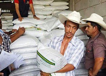 El bono productivo consiste en 25 a 50 libras de semilla de frijol, maíz y un quintal de fertilizante de fórmula para la siembra de una manzana.