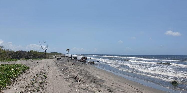 A través de diversos proyectos, el Gobierno dará protección ambiental en Tela, La Ceiba, Puerto Cortés y Omoa