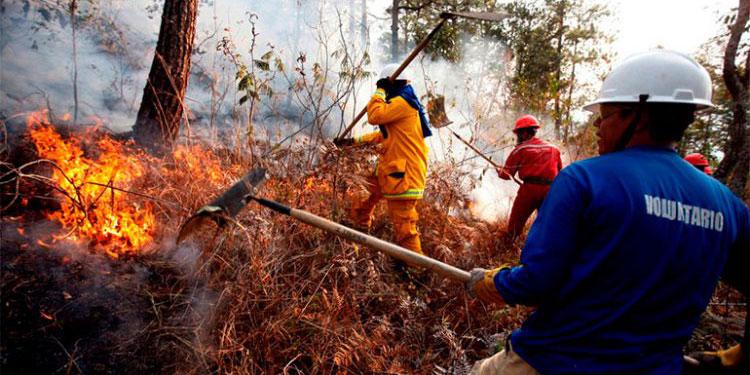 La contaminación ambiental en los últimos años se agrava en el país, debido a la gran cantidad de incendios forestales.