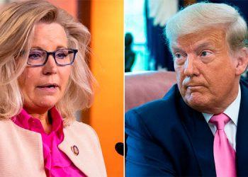 Lynne Cheney y Donald Trump