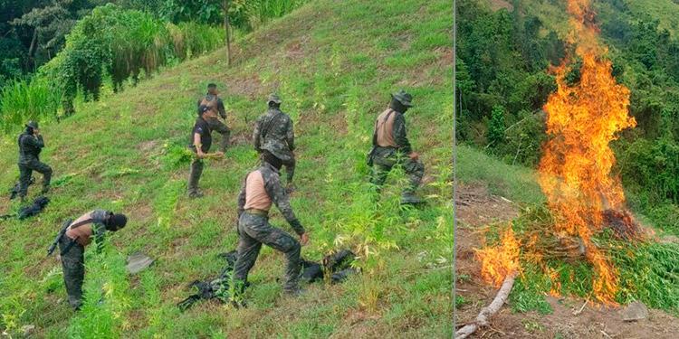 En la operación participó la Fuerza de Tarea Conjunta Xatruch en conjunto con la Dirección de Lucha Contra el Narcotráfico (DLCN), la Fuerza Naval y la Fiscalía.