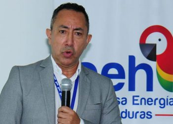 El gerente de EEH, Ricardo Roa Barragán.