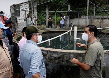El Presidente Juan Orlando Hernández recorrió el laboratorio y criadero Blue Lagoon, junto al propietario de la empresa, Jhonny Talhami.