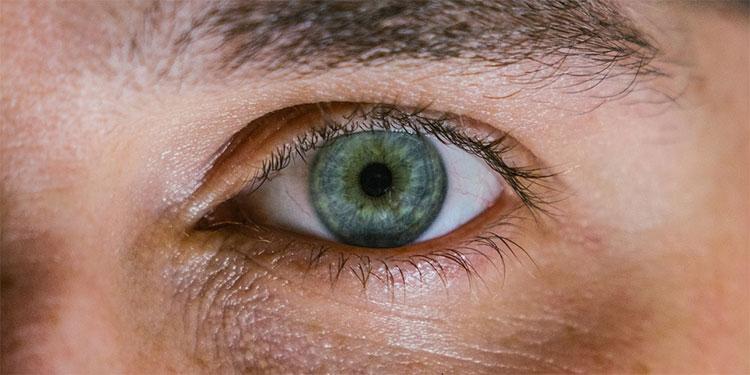Un hombre ciego a causa de una enfermedad genética degenerativa pudo recuperar parcialmente la vista gracias a una técnica innovadora optogenética.