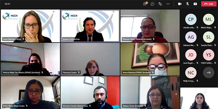 En el encuentro virtual participaron las autoridades centrales de Honduras, Brasil, Colombia, Costa Rica, Ecuador, El Salvador, Guatemala, Venezuela, México, Bolivia, Chile y Paraguay.