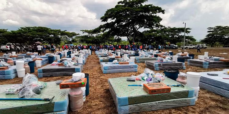 A nivel nacional son más de 300,000 personas las que se ha priorizado beneficiar, con la entrega de paquetes para sus hogares.