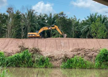 Las operaciones de control de calidad se llevaron a cabo en las comunidades de Nola, Kilómetro 6, Mango, entre otros puntos.