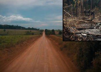 La apertura de carreteras debiese llevar desarrollo, pero desencadena una serie de problemas que agravan la deforestación en la Biosfera de Río Plátano.