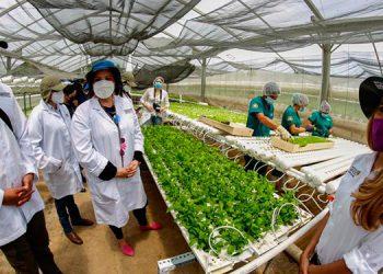 La Primera Dama, Ana García de Hernández, visitó Finca GreenHouse Harvest, siendo recibidos por la gerente, Yaneth Peach.