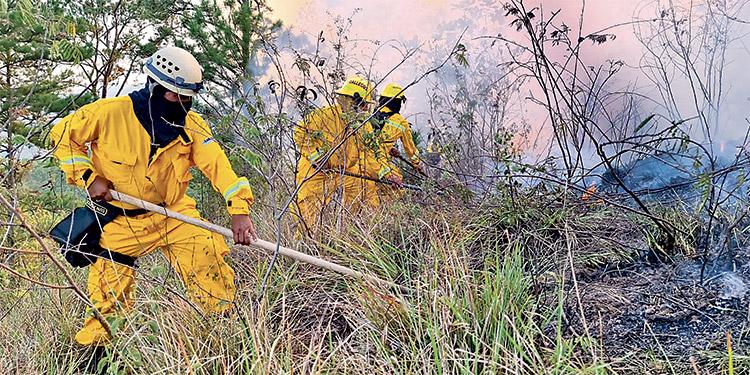 El gigantesco incendio ha sido combatido desde el pasado lunes por las autoridades junto a los pobladores de la zona.