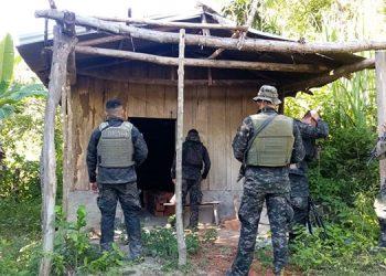 También fue asegurado un cuarto de madera y dos estructuras de madera que eran usadas para el secado, preparación y empaque de la marihuana.