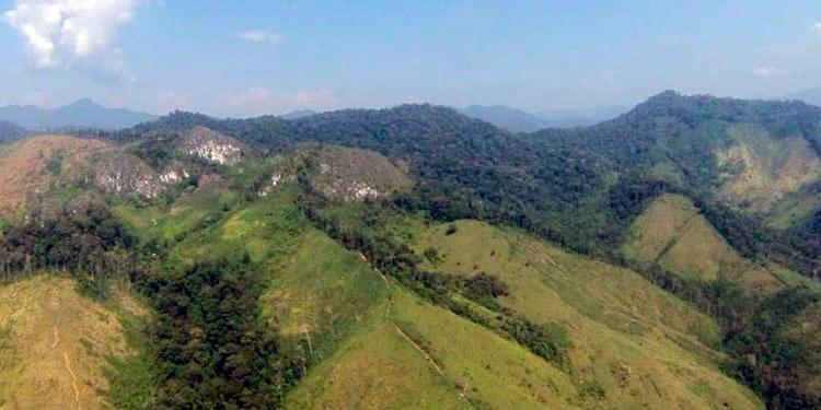 En los últimos años el grado de deforestación superó las 10,600 hectáreas la Biosfera del Río Plátano.