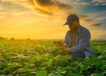 Con los agroparques, se detona la economía, generando empleos directos e indirectos.