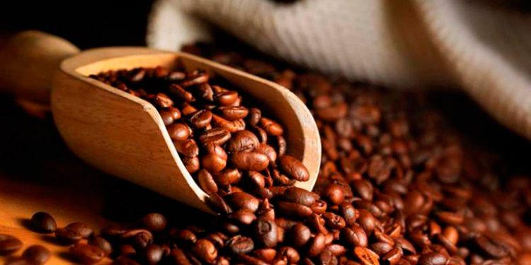 El ciclo cafetero que beneficia a 110 mil familias productoras en Honduras, arranca cada 1 de octubre y finaliza el 30 de septiembre.