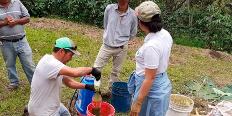 Los productores están siendo capacitados por el Programa MAS.