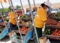 Los emprendedores de Cortés recibieron con entusiasmo 171 carritos de emprendimiento.