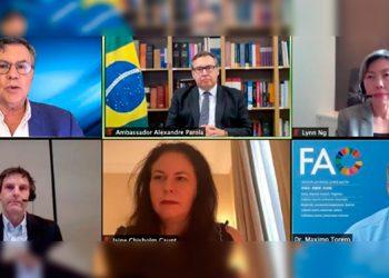 Expertos de distintos continentes disertaron sobre seguridad alimentaria durante la Pre-Cumbre de Sistemas Alimentarios de la ONU, que se realizó en Roma.