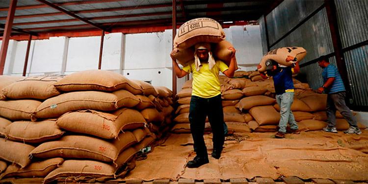 Las remesas familiares superarán los 6 mil millones de dólares este año. Mientras, el café dejaría alrededor de 1,200 millones de dólares, de acuerdo con nuevas proyecciones.