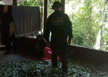 Se encontró un área donde almacenaban las hojas de coca para proceder a elaborar la pasta base de la cocaína.