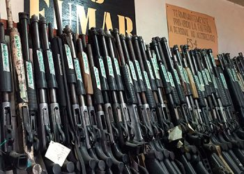 Las reformas presentadas permiten eliminar algunas contradicciones entre las distintas leyes que regulan el uso y tenencia de armas.