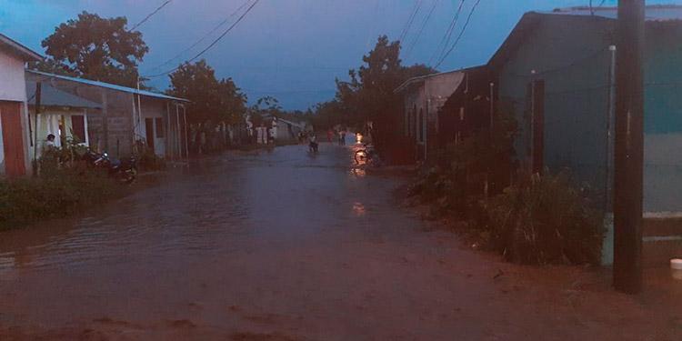 """Colonias como la """"Porfirio Lobo Sosa"""", resultaron inundadas debido al aguacero."""